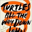 'Turtles All the Way Down,' by John Green
