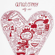 Anatomy of a Grandparent's Heart Screenprint