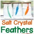 Salt Crystal Feathers